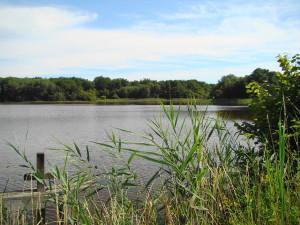 La Sologne compte de nombreux étangs.