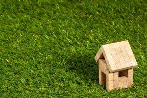 Et pourquoi pas un toit végétalisé pour votre maison ?