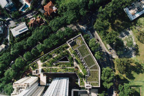 Une toit végétalisé en haut d'un immeuble