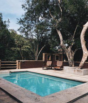 piscine extérieur avec terrasse en béton et transats en bois sous des arbres